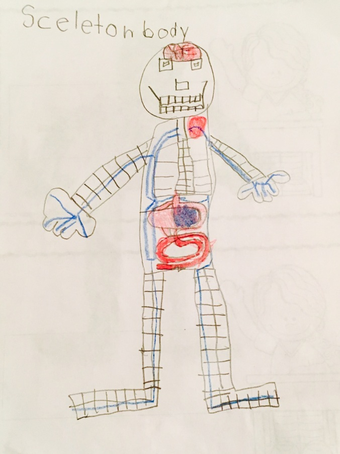 Drawing of a human body by a preschooler